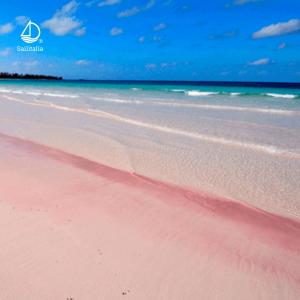 Spiaggia Rosa di Budelli, Sardegna (Italia)